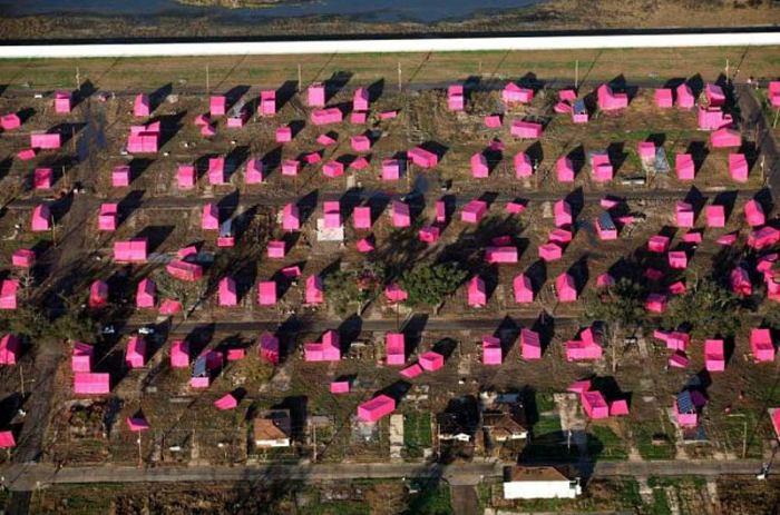 F Brad Pitt pink2203REX_800x530